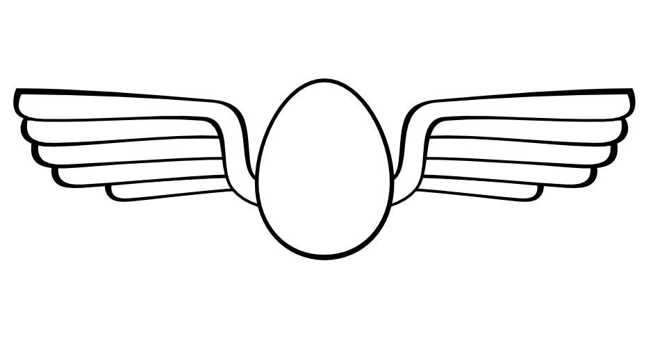 eggonautics