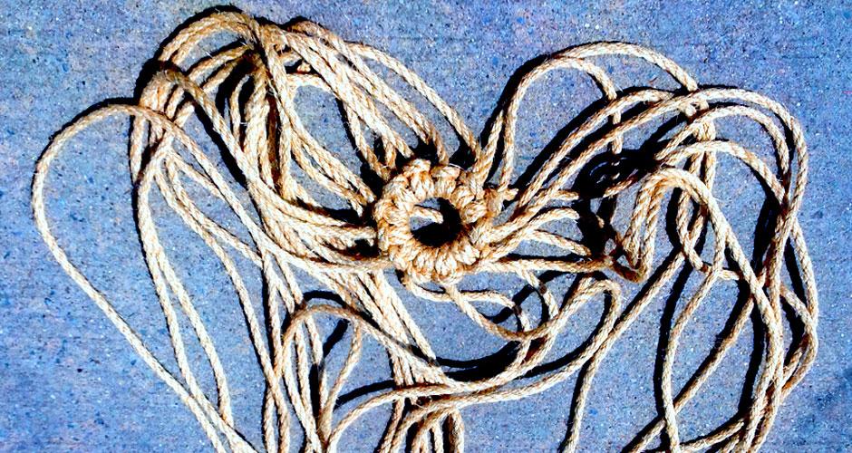 swingingspiderweb_logo